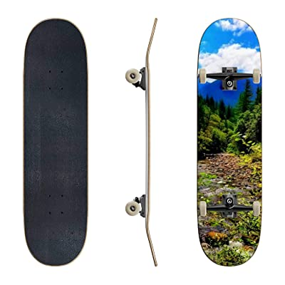 EFTOWEL Skateboards Stream Flows Through The Cascade Mountains Outside of Seattle wa Classic Concave Skateboard Cool Stuff Teen Gifts Longboard Extreme Sports for Beginners and Professionals : Sports & Outdoors