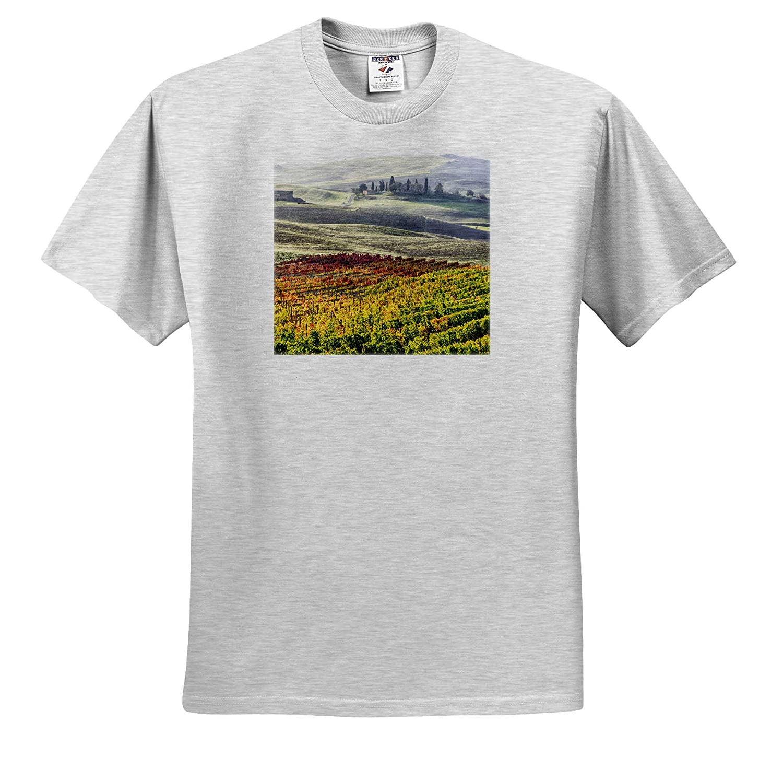 Autumn Vineyards Tuscany Tuscany Italy ts/_313755 San Quirico Dorcia 3dRose Danita Delimont - Adult T-Shirt XL