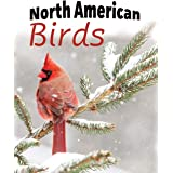 North American Birds: Extra-Large Print With Names (For Adults With Dementia and Other Life Challenges)
