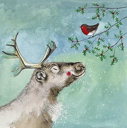 Alex Clark tarjetas navideñas renos y Robin Pack de 5 + 1 libre de Alex Clark tarjeta con cada pedido: Amazon.es: Hogar