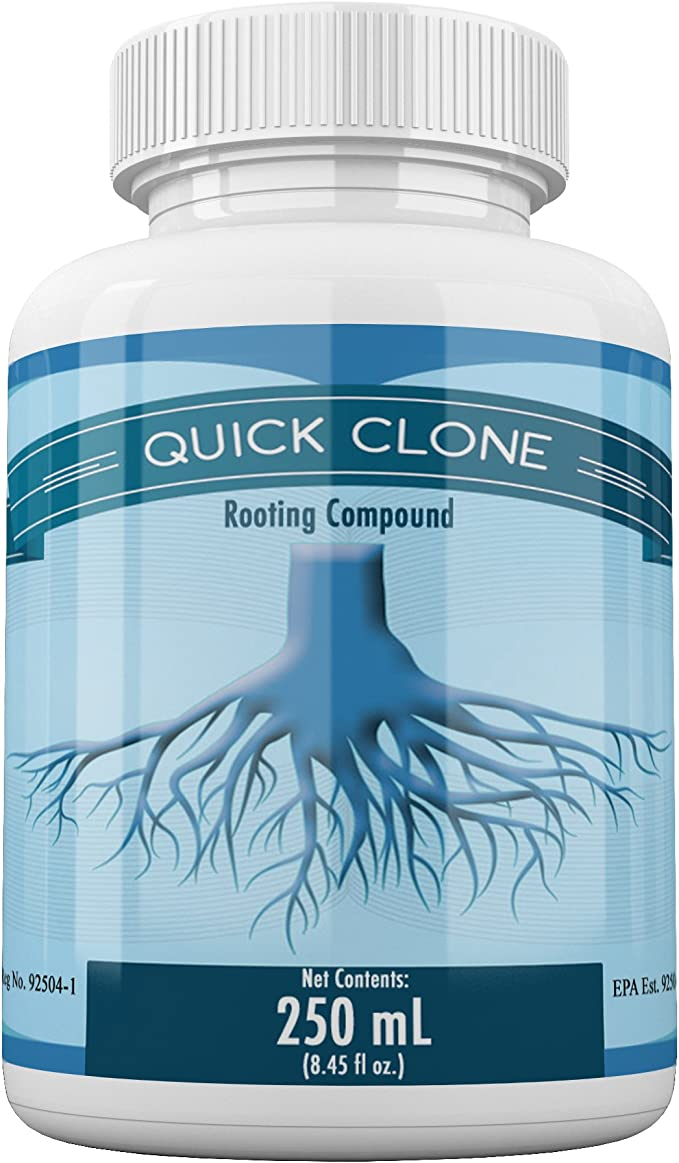 Quick Clone Gel – Best for Quick Results