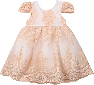 Aunavey Baby Girl Champagne Tulle Floral Dress Baby Kids Birthday Party Dress,Junior Wedding Bridesmaid, Christening Wear