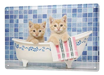 Decoración Gato Cartel de chapa Placa metal tin sign baño cachorro Letrero De Metal 20X30 cm: Amazon.es: Hogar
