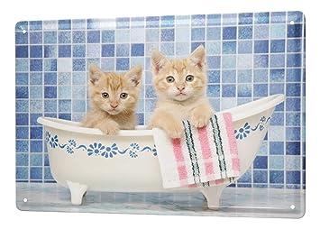 Decoración Gato Cartel de chapa Placa metal tin sign baño cachorro Letrero De Metal 20X30 cm: Amazon.es: Hogar