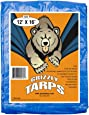 Grizzly Tarps 12 x 16 Feet Blue Multi Purpose Waterproof Poly Tarp Cover 5 Mil Thick 8 x 8 Weave