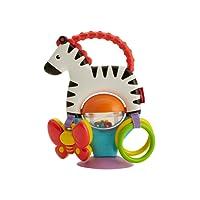 Fisher-Price Zebra Attività - Giocattolo Neonato, FGJ11
