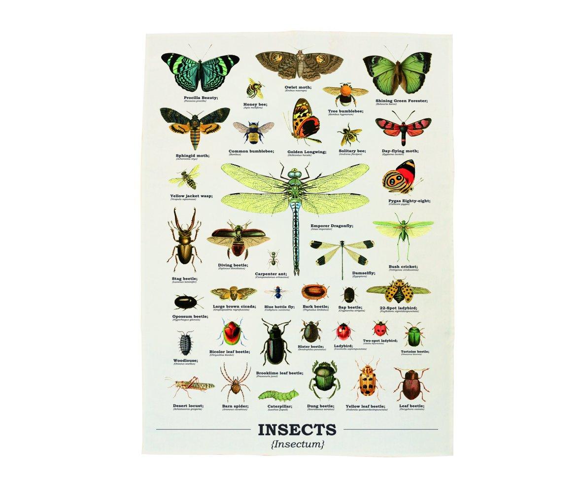 Gift Republic-Canovaccio, motivo: insetti, multicolore GR270095