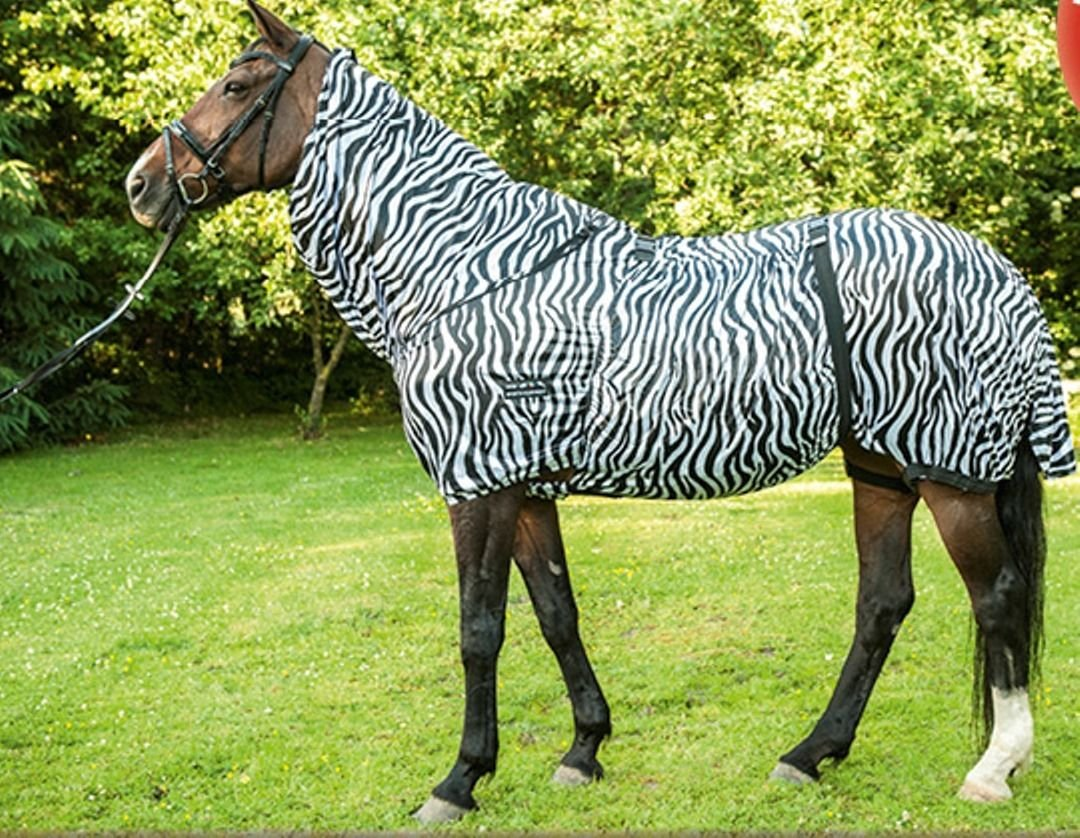 UK 4'3   EU 85cm   US 51\ HKM Eczema Rug Zebra With Adjustable Neck Cover Stretch Horse Predection Blanket