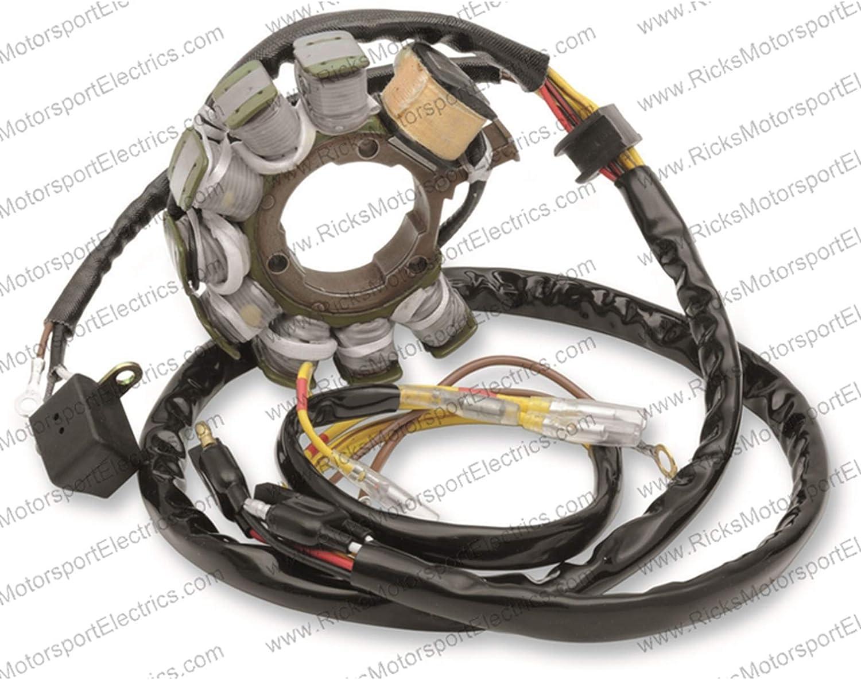 Total Power Parts Apo4001 Stator Coil for Polaris Magnum 425 95 96 ...