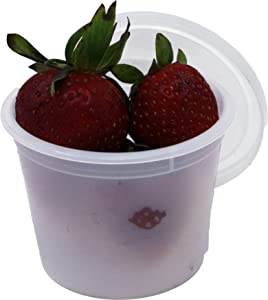 Vito's Famous Deli Container with Lid, 4 Ounce (Pack of 100) | Leak Resistant | Freezer Safe