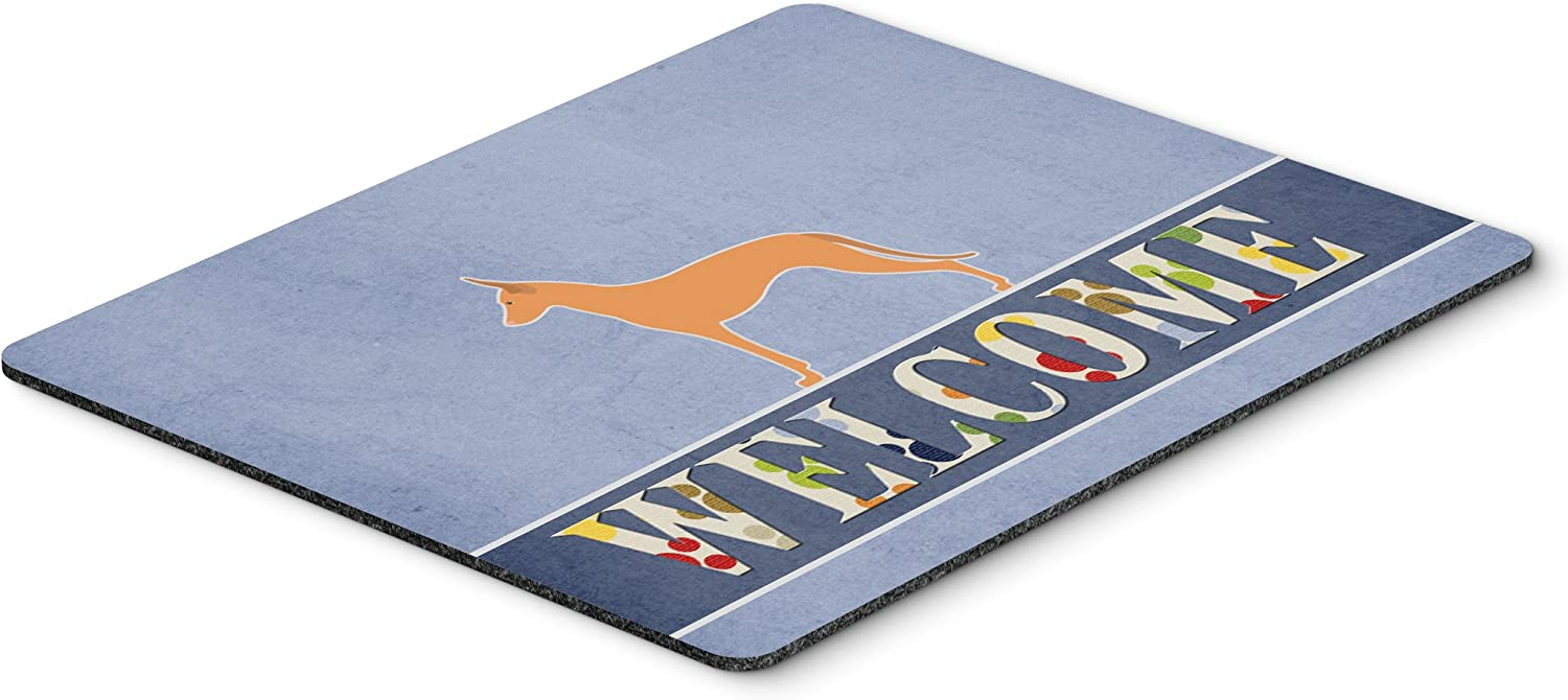 Multicolor Hot Pad or Trivet Carolines Treasures BB5492MP Pharaoh Hound Welcome Mouse Pad Large