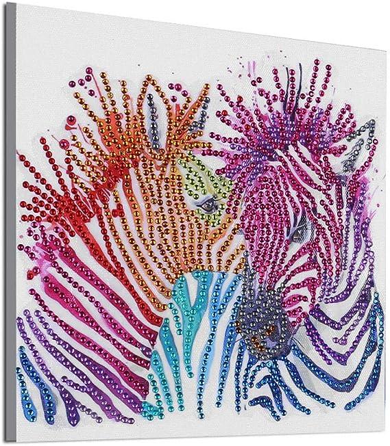 WOBANG Diamond Painting, Zebra Muster 5D Diamant Set Dibujo DIY Stickerei apartamento Modern decoración: Amazon.es: Juguetes y juegos