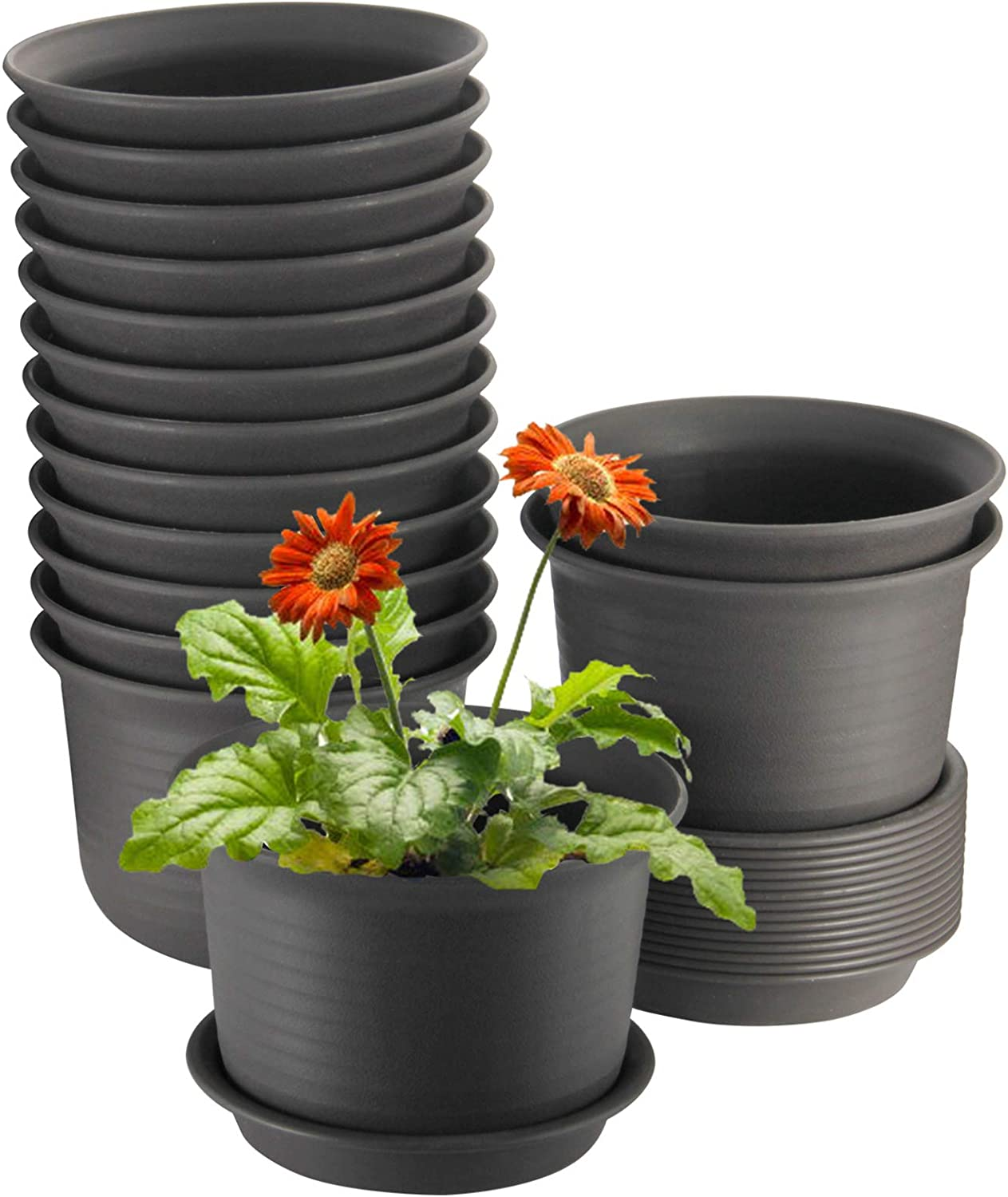 Plant Pots, ZOUTOG 6 inch Plastic Planters with Drainage Hole and Tray, Pack of 15 - Plants Not Included, Brown : Garden & Outdoor