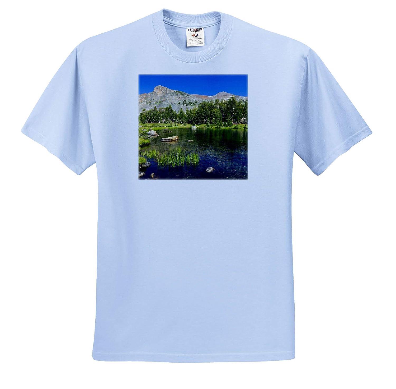 ts/_314692 California Adult T-Shirt XL Alpine tarn in Dana Meadows,Yosemite NP 3dRose Danita Delimont California USA