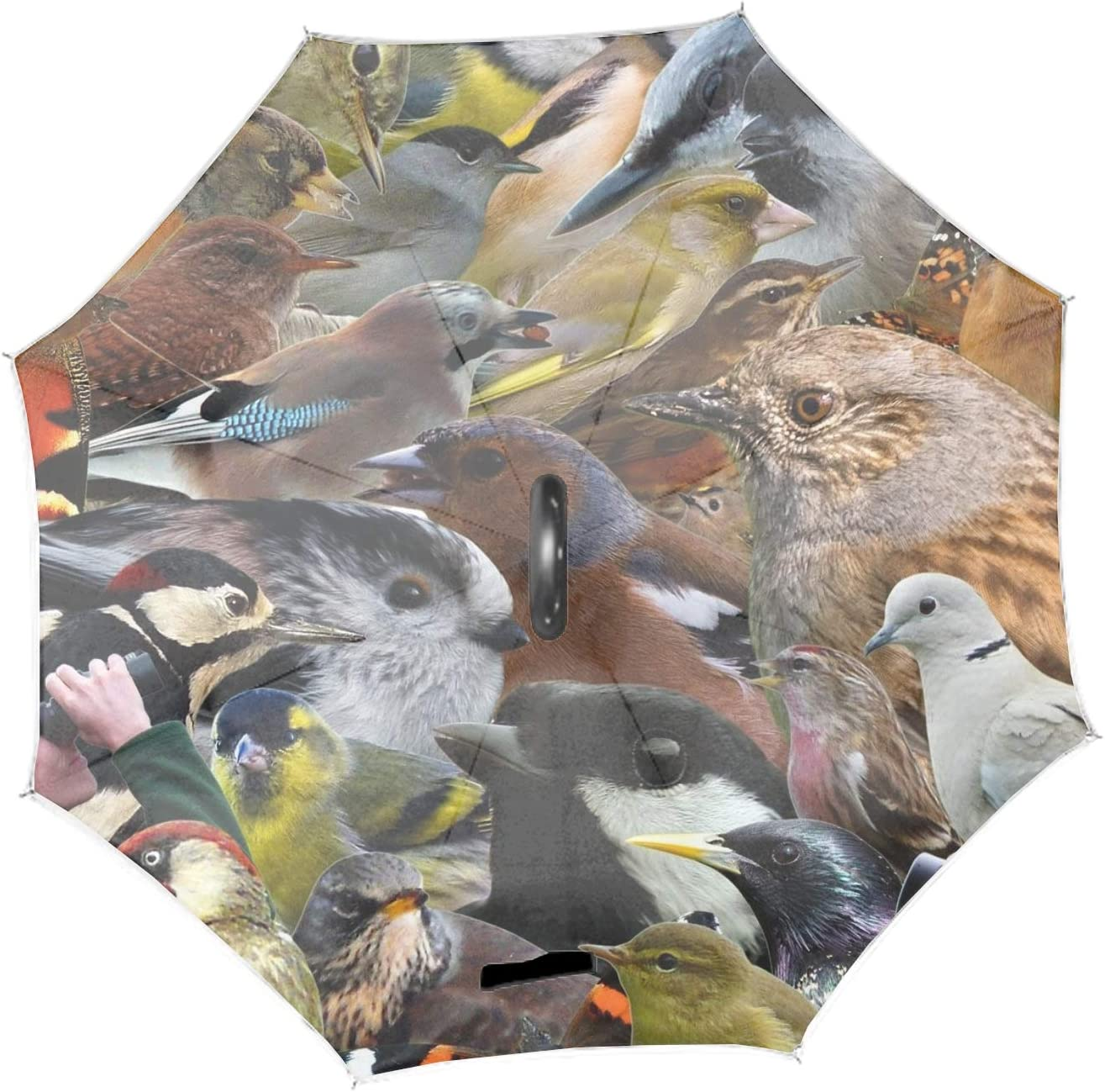 Birds Watcher Reverse//Inverted Double-Layer Waterproof Straight Umbrella Inside-Out for Car Use