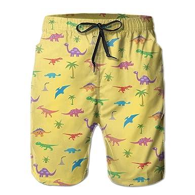 b6b49d0e23 ICE65SALT Mens Dinosaurs And Coconut Palm Swim Trunks Quickly-dry Casual  Beach Cargo Shorts | Amazon.com