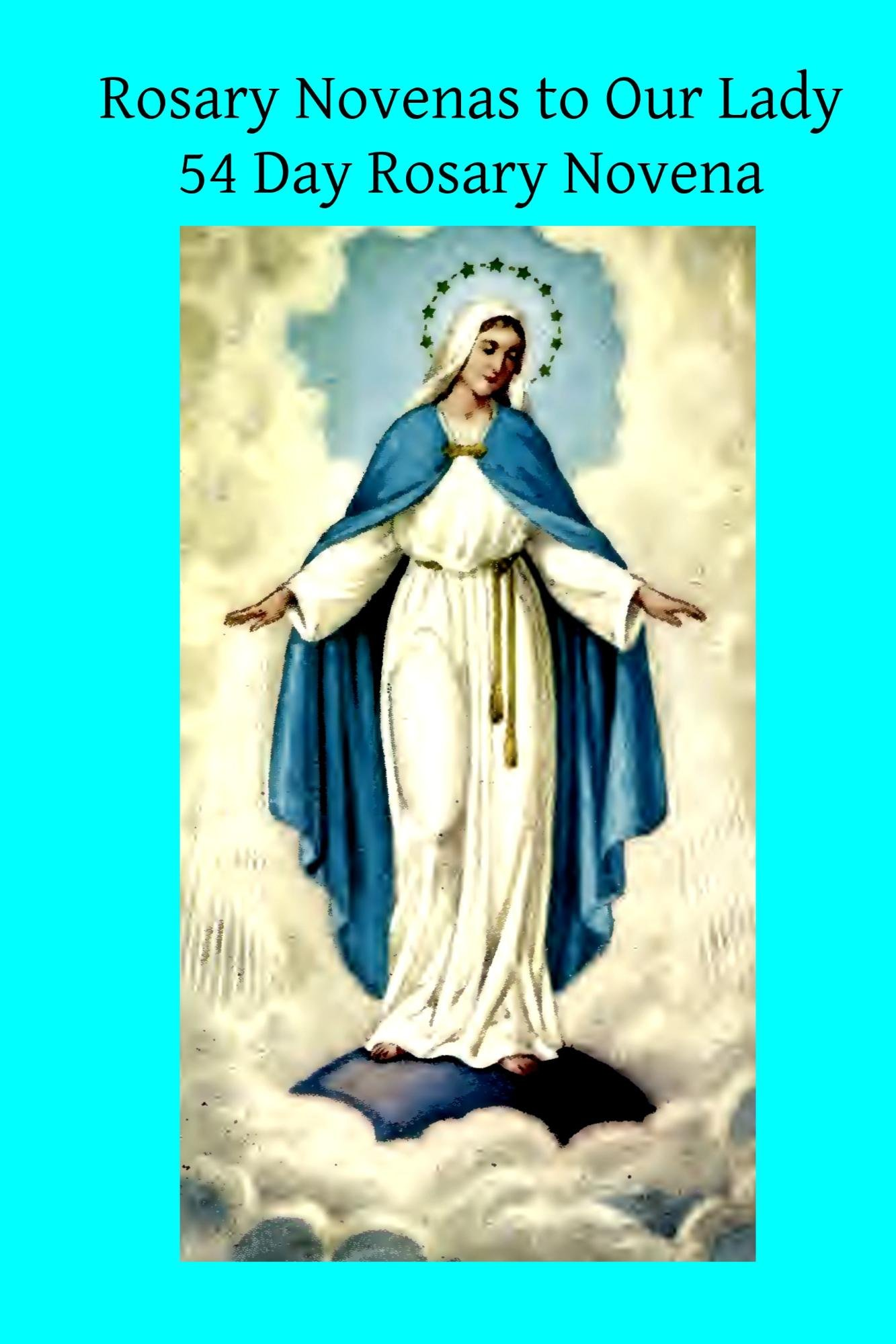 Rosary Novenas To Our Lady  English Edition