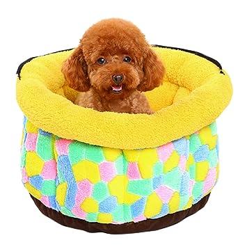 qianle nuevo cama para perros desmontable Caseta Gatos Perros Dormir Muebles: Amazon.es: Productos para mascotas