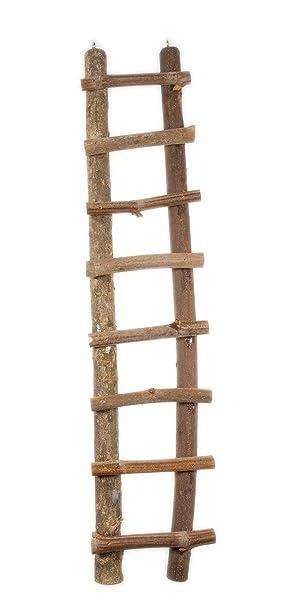 Hugro - Escalera de Madera para roedores (Extra Grande, 50 cm): Amazon.es: Productos para mascotas