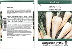 Harris Model Parsnip Garden Seeds - 3 Gram Packet ~500 Seeds - Non-GMO, Heirloom Vegetable Gardening Seeds - AAS Winner