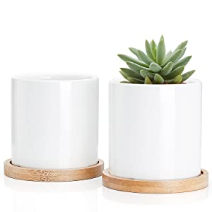 Greenaholics Succulent Plant Pots - 3 Inch Ceramic Cylindrical Containers, Small Cactus Planters, Flower Pots with Drainage Hole, Bamboo Tray, Set of 2, White