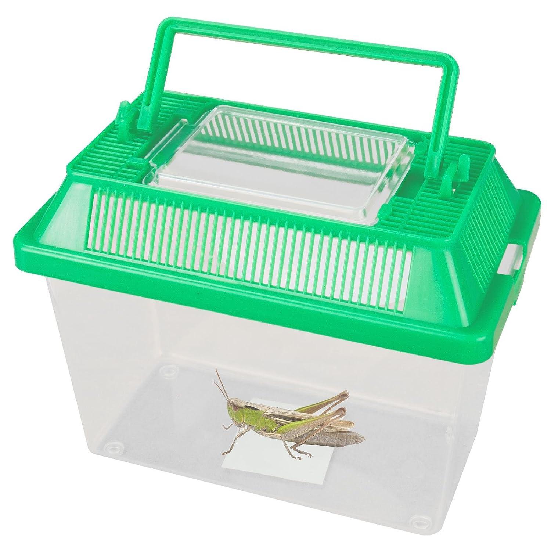 Petit Animal Gardien pour boîte en plastique transparent avec couvercle ventilé ouverture Poignée de transport les insectes araignées Reptiles Live alimentaire Sabar