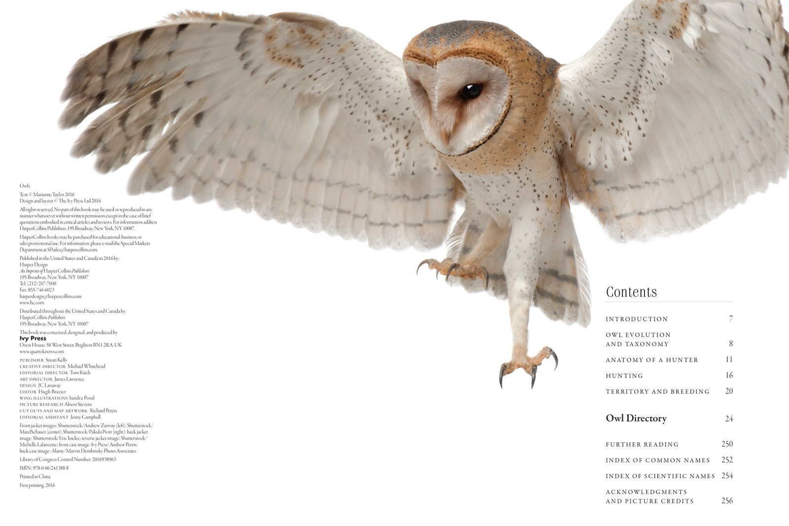 Owls: A Guide to Every Species in the World: Marianne Taylor ...