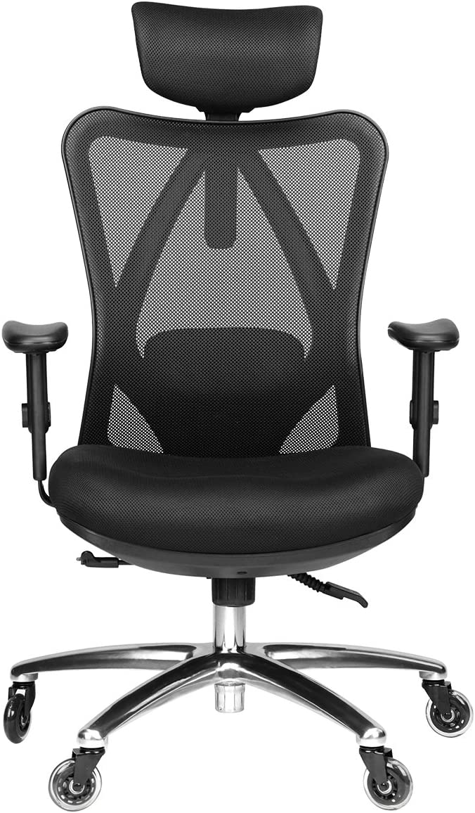 Duramont Ergonomic Adjustable Office Chair with Lumbar Support and Rollerblade Wheels - High Back with Breathable Mesh - Thick Seat Cushion - Adjustable Head & Arm Rests, Seat Height - Reclines: Office Products