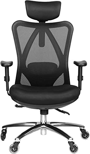 Duramont Ergonomic Adjustable Office Chair with Lumbar Support