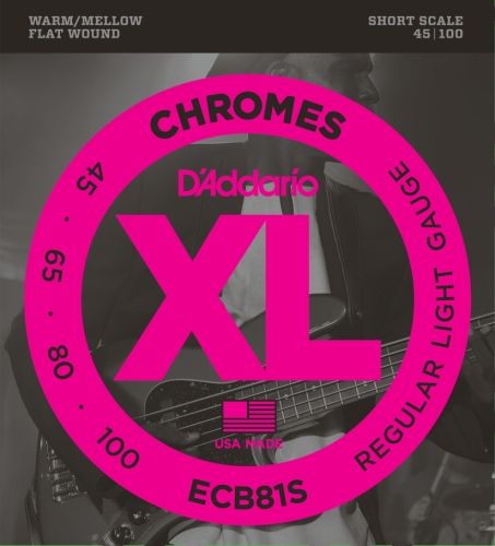 (D'Addario ECB81S Chromes Bass Guitar Strings, Light, 45-100, Short Scale)