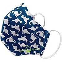 green sprouts Child Reusable Mask-Navy Dino-24mo+, Navy, Child