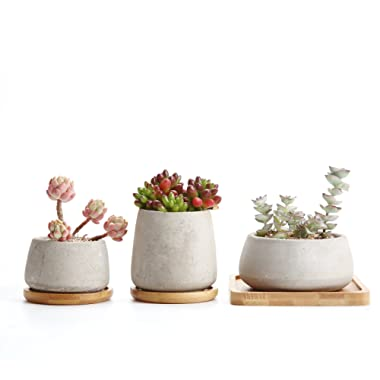 T4U 3 ~4.25'' Cement Succulent Cactus Pot, Concrete Planter Pot Container Window Box, Small Clay Pot for Plants Flowers with Drainage Bamboo Tray for Home Decor, Set of 3(Grey)