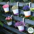 TrustBasket Crown of Colors Railing Planters - Set of 5 (Green, Orange, Pink, Purple, Yellow)