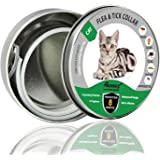 REGIROCK Flea and Tick Collar for Dogs/Cats - 8 Months Protection - Hypoallergenic, Adjustable & Waterproof Dog Collar - Flea Treatment Tick Prevention with Natural Essential Oil