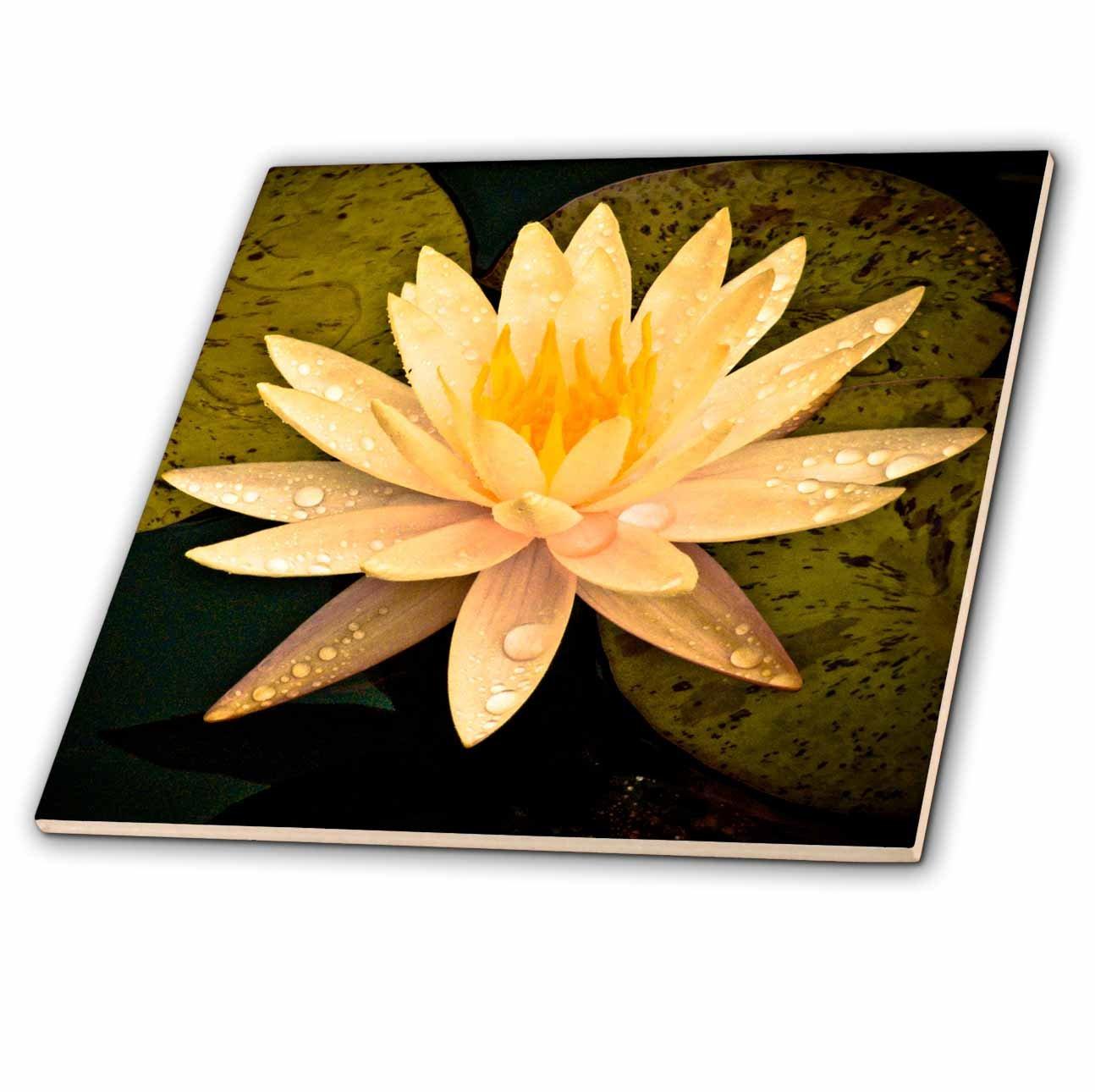 Amazon 3drose Ct139054 Yellow Lotus Flower Ceramic Tile 12