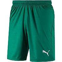 PUMA Liga Shorts Core with Brief Broek voor heren