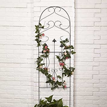 Amagabeli 60u0026quot; X 18u0026quot; Rustproof Black Iron Garden Trellis For  Climbing Plants Potted Vines