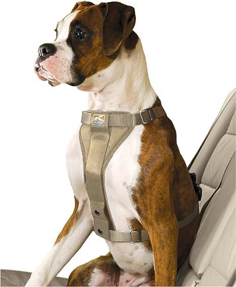 Kurgo Arnés para perro sin tirones y correa de asiento para coche ...