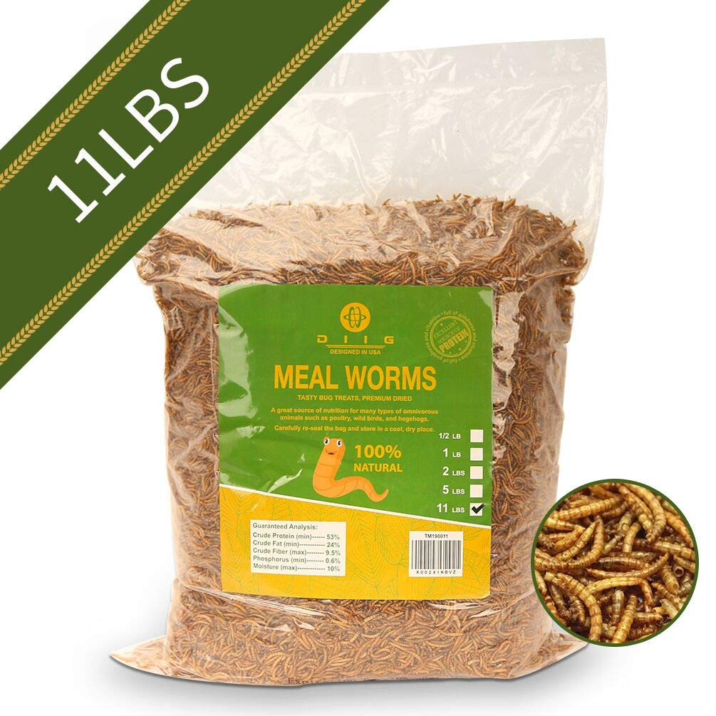diig Non-GMO Dried Mealworms - Treats for Birds Chickens Hedgehog Hamster Fish Reptile Turtles, 11 lb