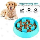 Pet Supplies Slow Feeder Dog Bowl Fun Feeder Stop Bloat