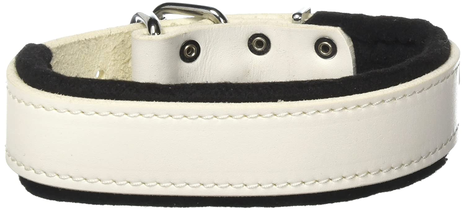 Dean & Tyler 18-Inch by 1-1 2-Inch DT Delight Leather Dog Collar with Felt Padding and Strong Hardware, Fits Neck 16-Inch to 20-Inch, White