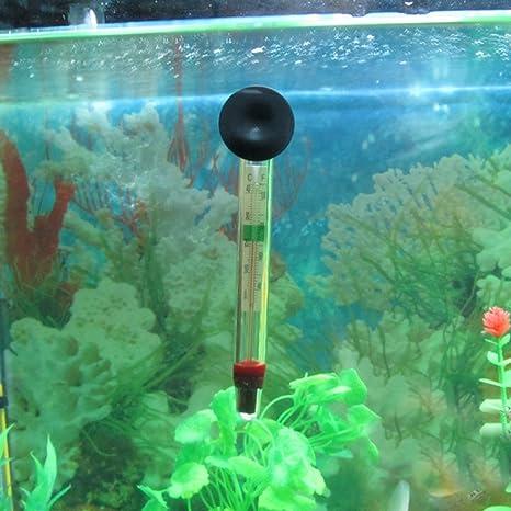 Romote Acuario de Peces Termómetro Tanque Flotante Termómetro Temperatura de Agua: Amazon.es: Jardín