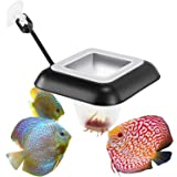 Fischuel Aquarium Feeding Ring Floating Rings Food Feeder Square with Suction Cup for Fish Feeder with Blood Worms Meal…