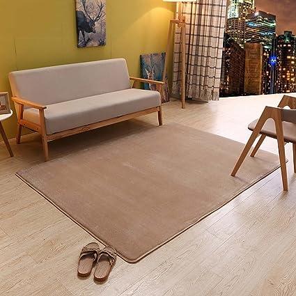 Amazon Com Momo Rug Home Coral Carpets Einfache Europaische