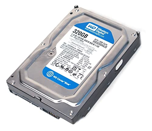 WD Caviar Blue 320GB HDD for Gaming