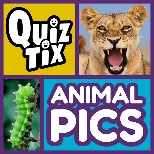Zoo Birds - QuizTix: Animal Pics Quiz