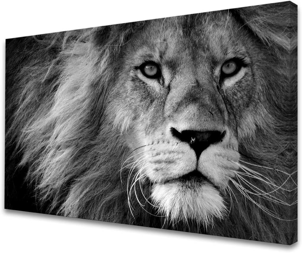 Baisuart D0169 Modern Giclee Canvas Prints Wall Art Stretched Artwork Black and White Lion Pictures to Photo Paintings on Canvas Wall Art for Bedroom Living Room Home Decorations Office Wall Décor