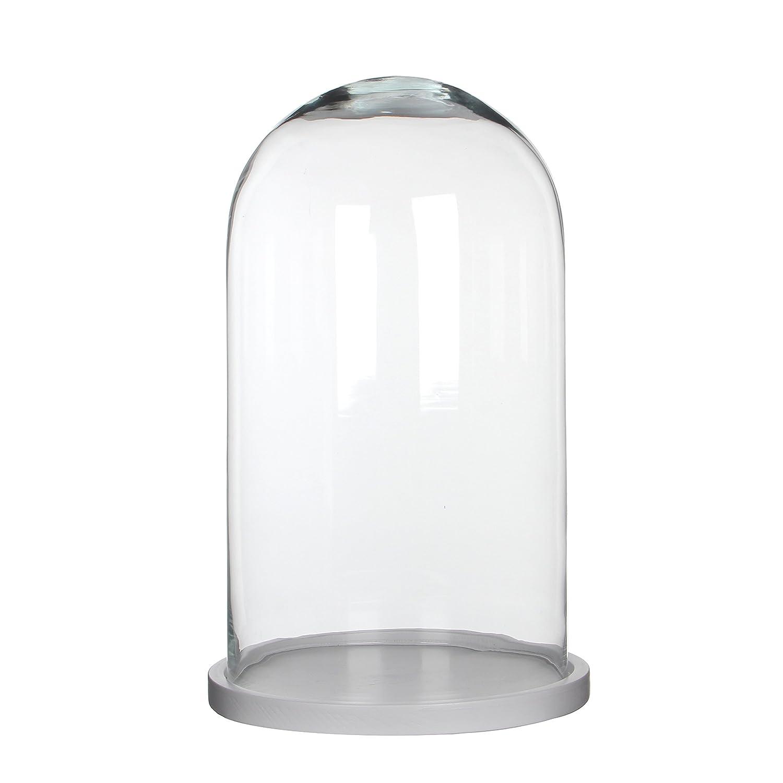 Trasparente 17,5/x 17,5/x 23/cm Teca a Cupola in Vetro Modello 242305 MICA Decorations