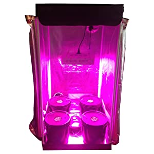 Hydroponic Grow Room - Complete Grow Tent