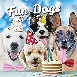 Fun Dogs 2020 Dog Wall Calendar